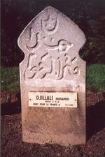 Djilali1_2